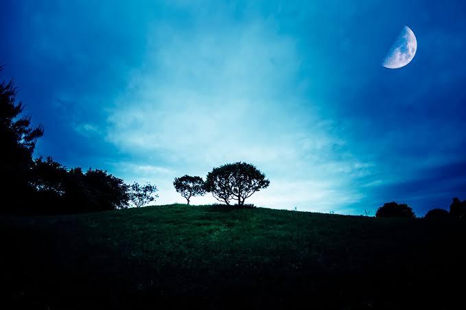 占星術|フォルス(ホルス)のホロスコープの意味や特徴とは?